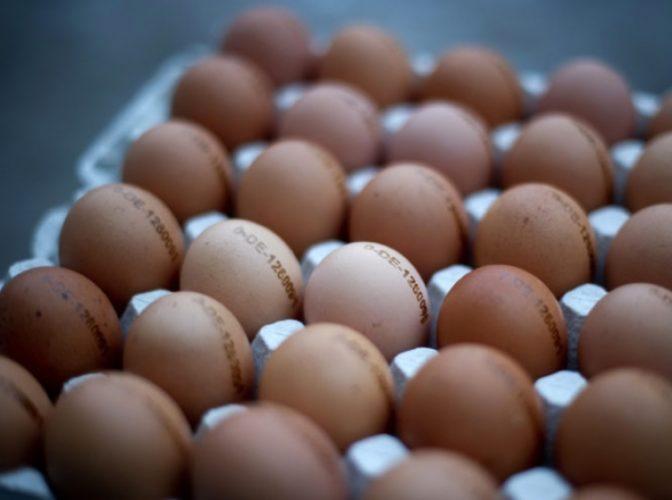 ALERTĂ NAȚIONALĂ Sute de mii de ouă CONTAMINATE au fost vândute: Alte câteva sute de mii au fost confiscate