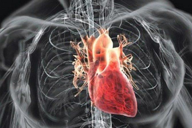 Prermieră medicală în Israel - Prima inimă umană vascularizată realizată cu ajutorul unei imprimante 3D